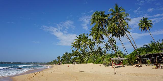 beach-2314336_960_720.jpg (201.09 Kb)