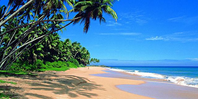 beach_sri_lanka.jpg (269.33 Kb)