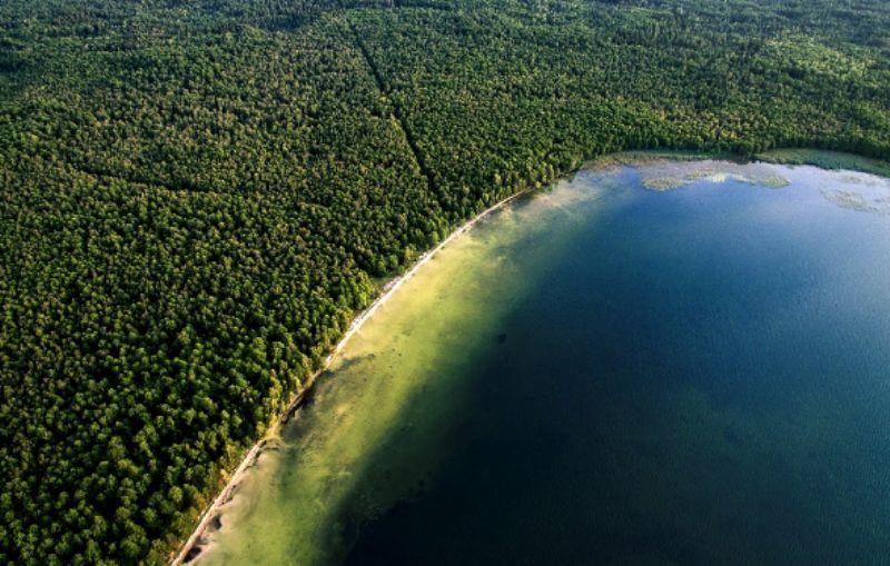 Молодильна вода Рівненщини: все про Біле озеро