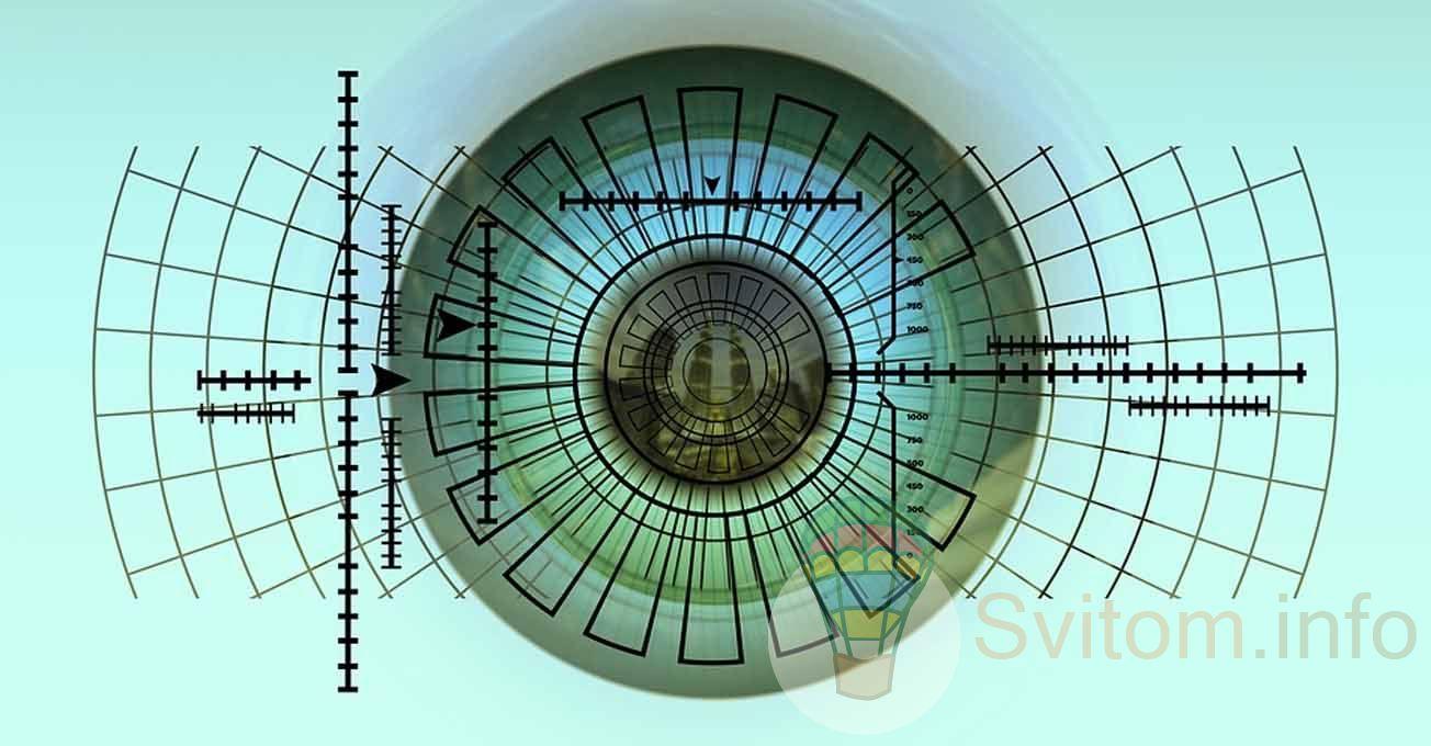 biometric.jpg (110.98 Kb)