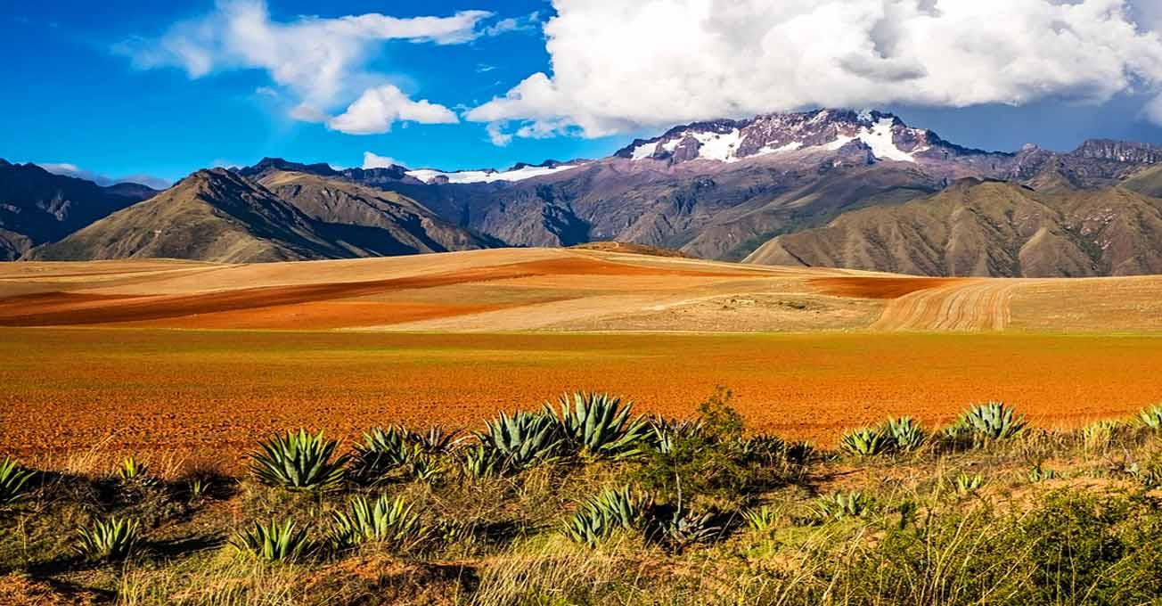 bolivia.jpg (126.89 Kb)