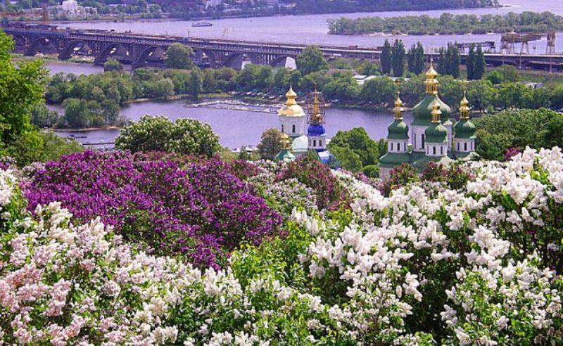 buzok_kiiv.jpg (126.77 Kb)