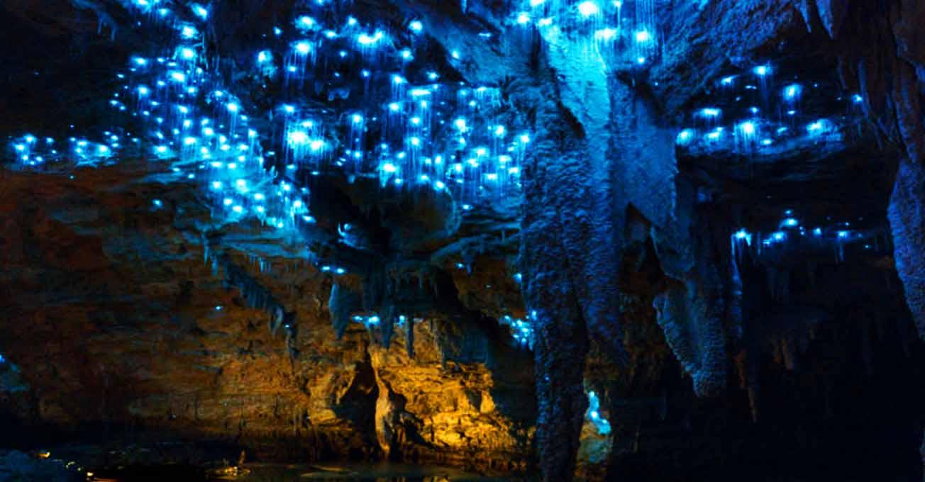 cavesoffirefliesweitomonewzealand.jpg (78.7 Kb)