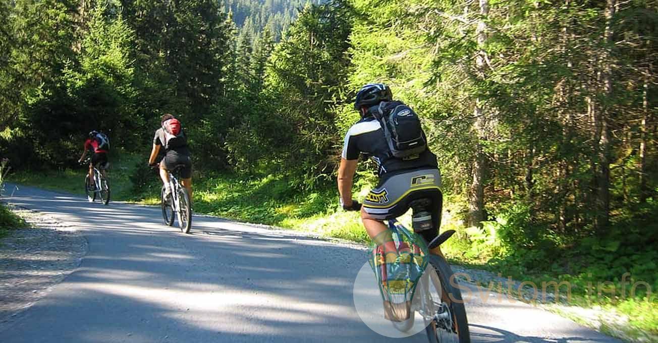 cyclinggroup2.jpg (187.18 Kb)