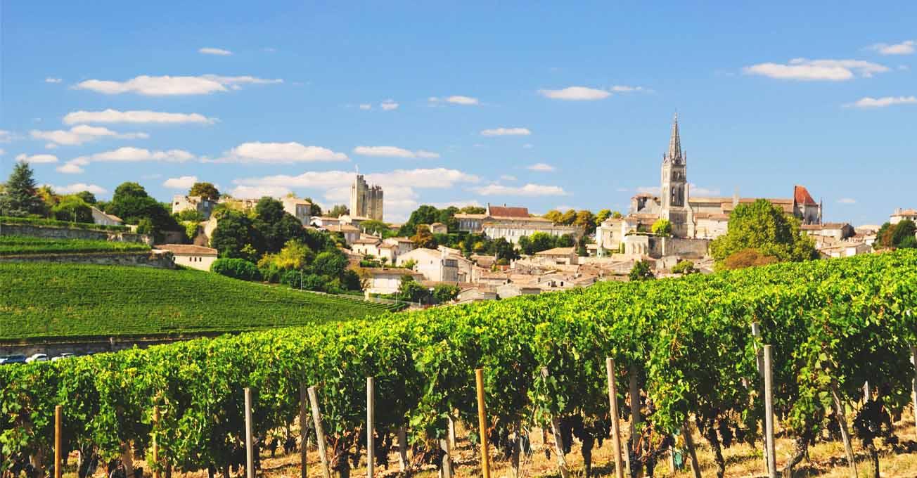 france_wine.jpg (123.55 Kb)