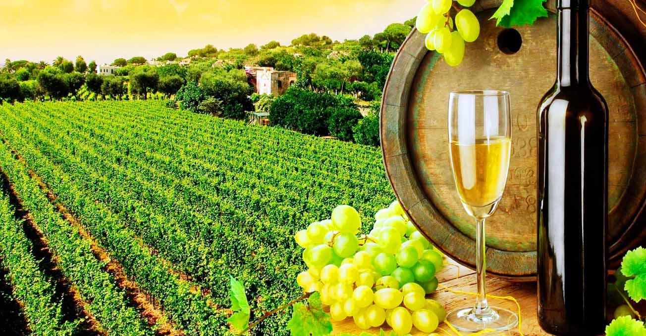 Цінителям вина треба відвідати…