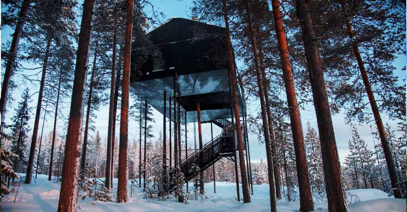 house_on_the_tree_treehotel.jpg (137.39 Kb)