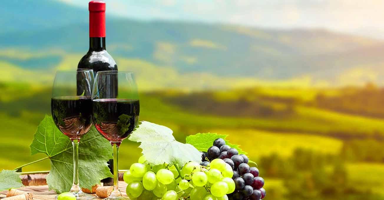 Названа найкраща країна для любителів вина