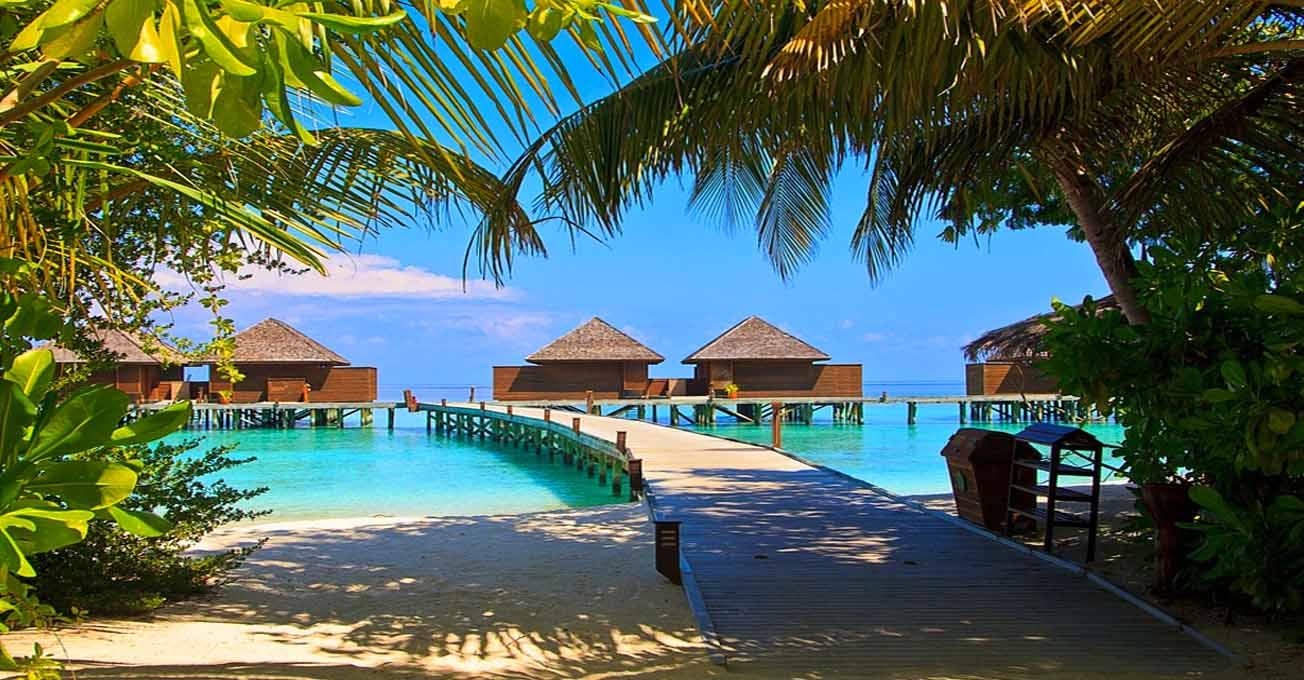 maldives_island.jpg (132.61 Kb)