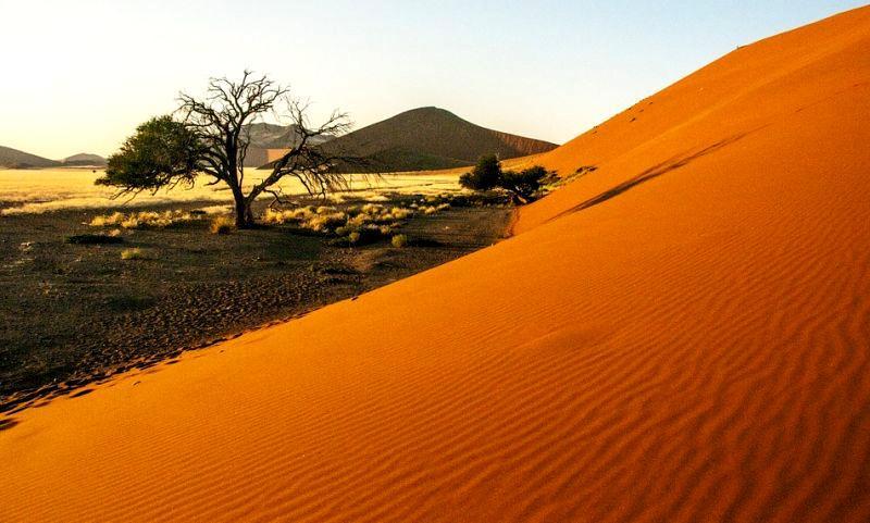 namibiya.jpg (62.46 Kb)