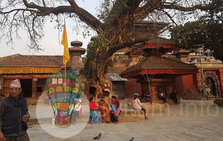 nepal1.jpg (88.4 Kb)