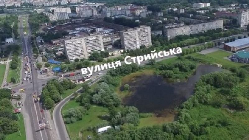 perehrestya_striiska.jpg (123 Kb)