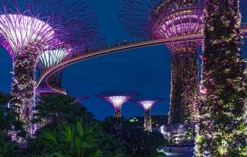 sad_bilya_zatoki_singapur.jpg (117.38 Kb)