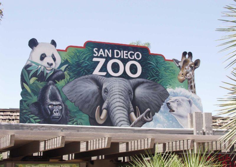 san_dfego_zoopark.jpg (67.85 Kb)