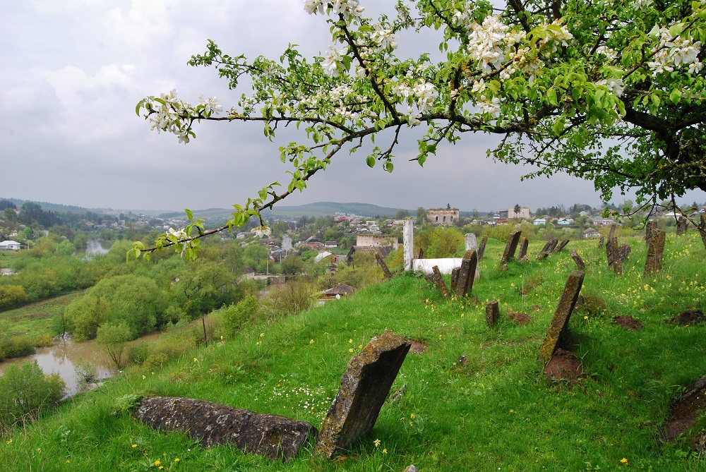 sataniv_jewish_cemetery3.jpg (426.91 Kb)