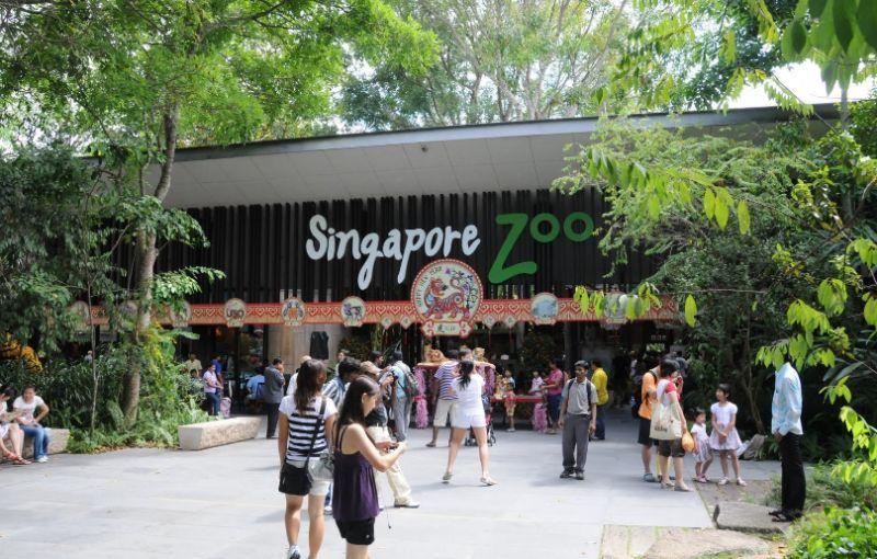 singapur2.jpg (107.13 Kb)