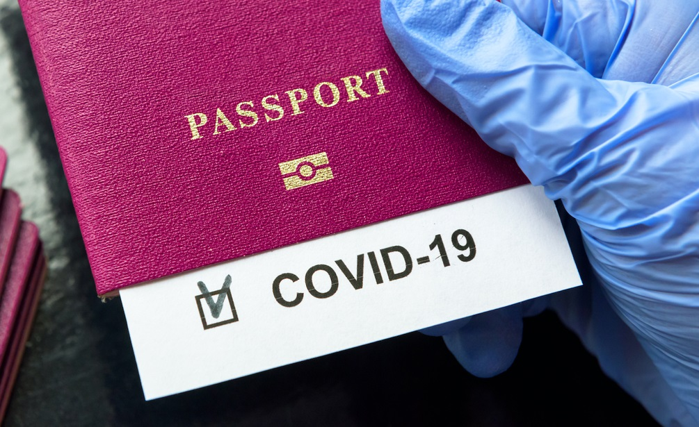 Паспорти вакцинації для поїздок в ЄС