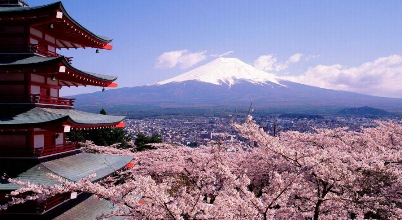 Незабутній день в Японії. Частина 1.