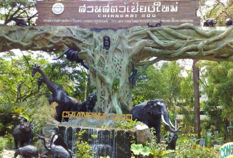 zoopark_chiang_mai.jpg (116.65 Kb)